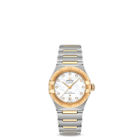 OMEGA Co-Axial Master Chronometer 29 mm - SKU 131.20.29.20.55.002