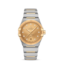 OMEGA Co-Axial Master Chronometer 39 mm - SKU 131.20.39.20.58.001