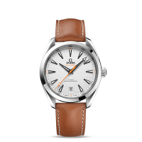Omega Co-Axial Master Chronometer 41 mm - SKU 220.12.41.21.02.001