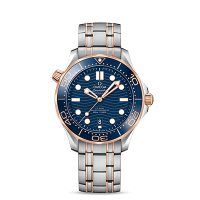 Omega Co-Axial Master Chronometer 42 mm - SKU 210.20.42.20.03.002