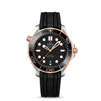 Omega Co-Axial Master Chronometer 42 mm - SKU 210.22.42.20.01.002