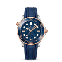 Omega Co-Axial Master Chronometer 42 mm - SKU 210.22.42.20.03.002