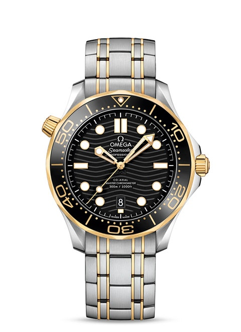 Diver 300M Omega Co-Axial Master Chronometer 42 mm - 210.20.42.20.01.002