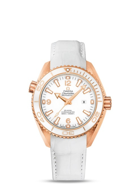 Planet Ocean 600M Omega Co-Axial 37,5mm - 232.63.38.20.04.001