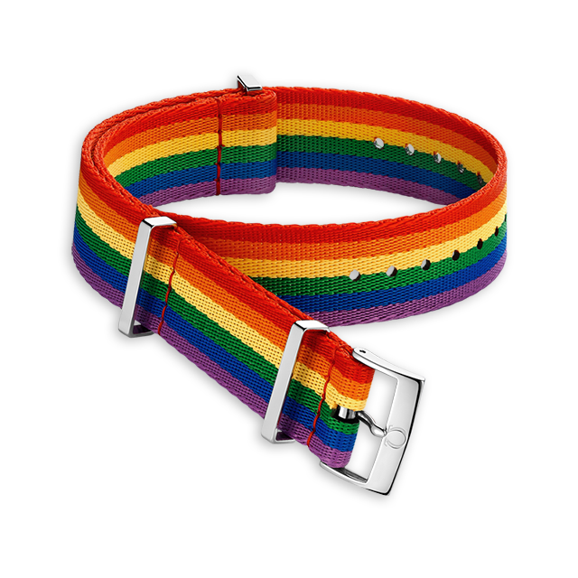 Polyamide 6‑stripe red, orange, yellow, green, blue and purple strap - 031CWZ011610