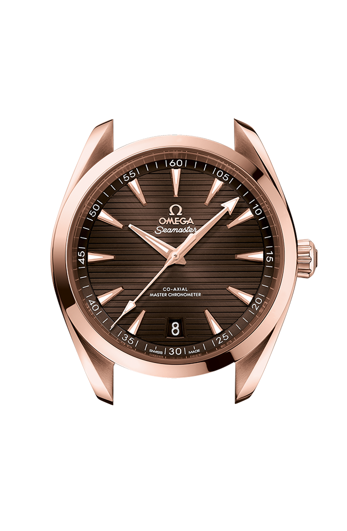 Omega Co-Axial Master Chronometer 41 mm - 220.53.41.21.13.001