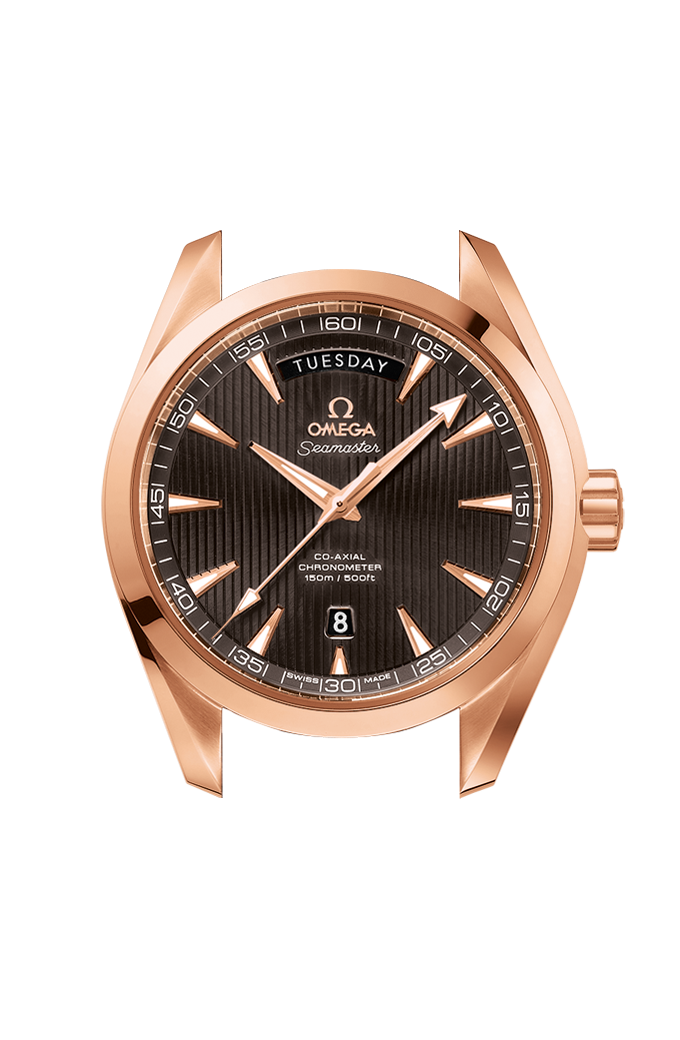 Omega Co-Axial Day-Date 41.5 mm - 231.53.42.22.06.001