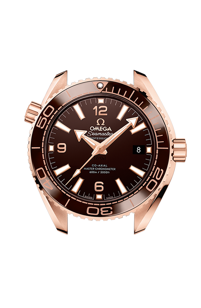 Omega Co-Axial Master Chronometer 39.5 mm - 215.63.40.20.13.001