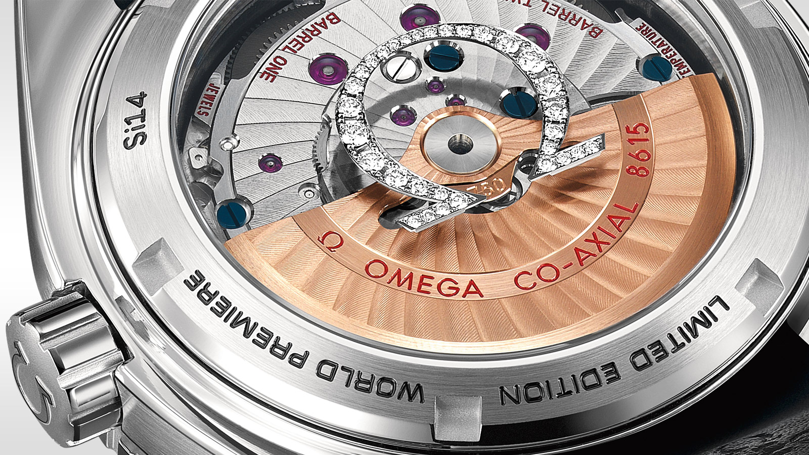 Seamaster Planet Ocean 600M Planet Ocean 600M Omega Co‑axial GMT 43.5 mm - 232.98.44.22.01.001 - View 2