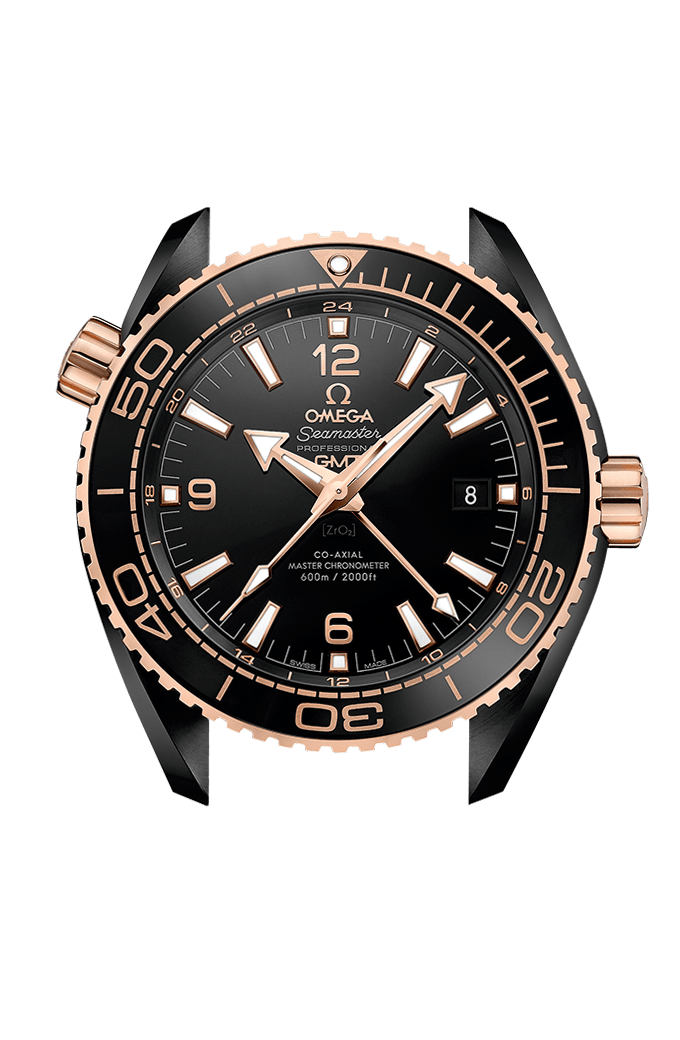 Omega Co-axial Master Chronometer GMT 45.5 mm - 215.63.46.22.01.001