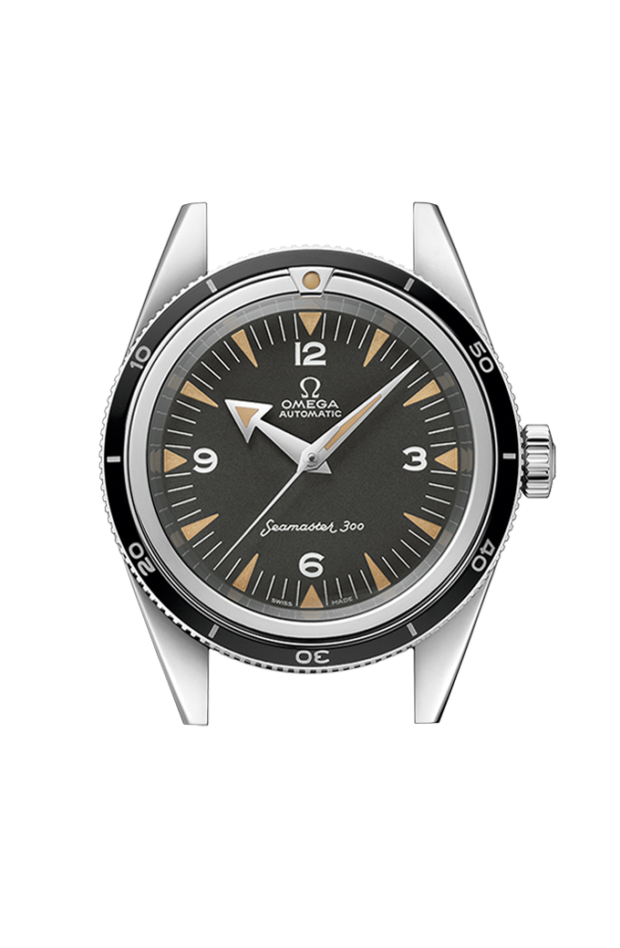 Omega Co-Axial Master Chronometer 39 mm - 234.10.39.20.01.001