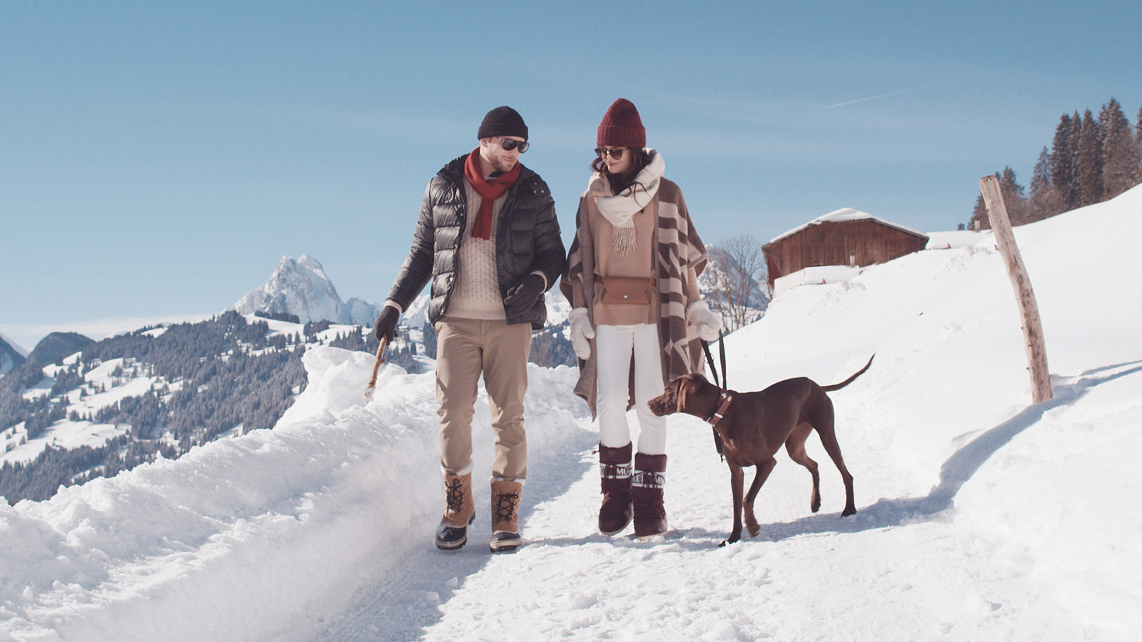Couple walking in the snow with a dog
